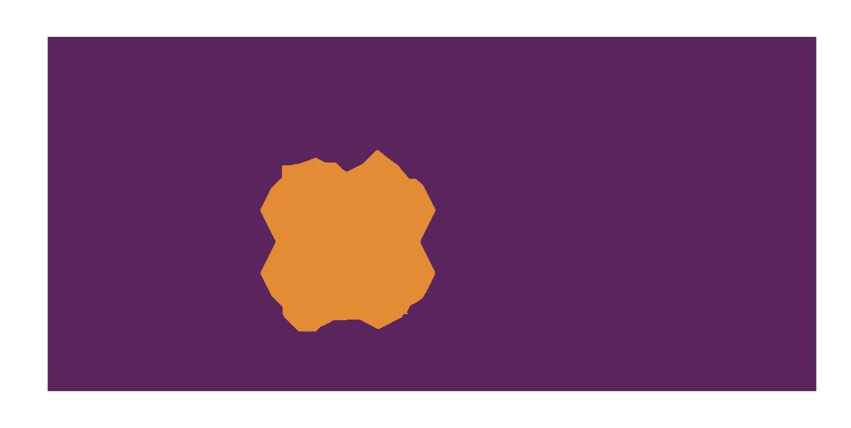 DNCU Logo