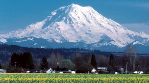 Puyallup Home Lending