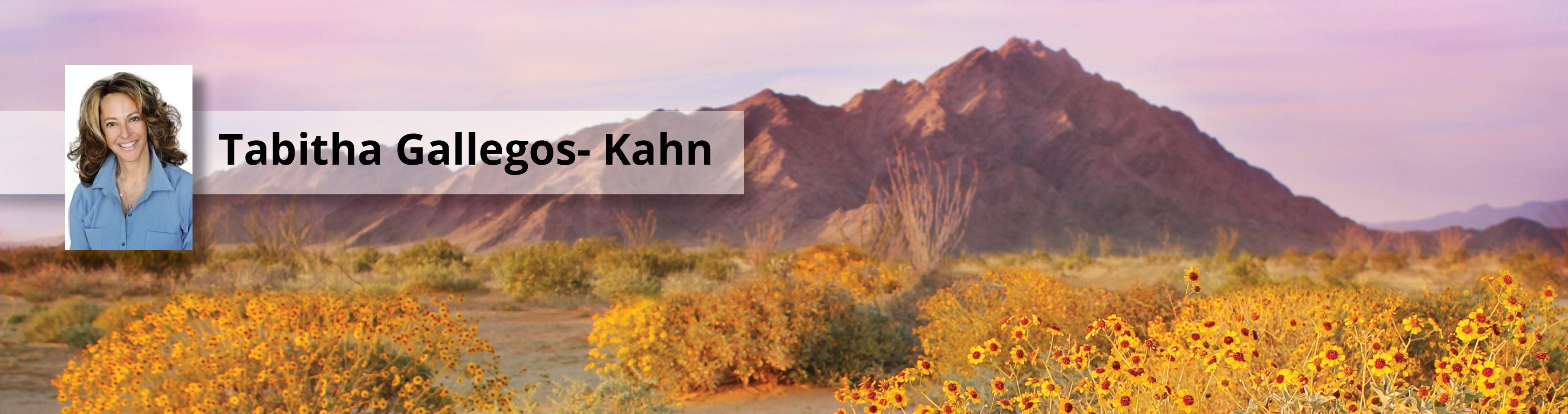 Tabitha Gallegos-Kahn Photo Banner
